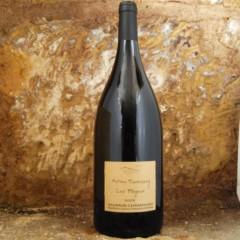 Saumur - Les Poyeux 2014 Magnum - Antoine Sanzay