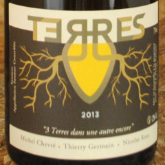Saumur Champigny Terres 2013 Thierry Germain domaine des roches neuves