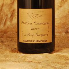 Saumur Champigny - La Haye Dampierre 2017 etiquette - Antoine Sanzay