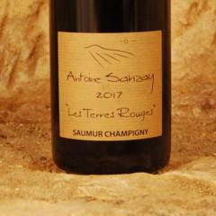 Saumur Champigny - Les Terres Rouges 2017 - Antoine Sanzay